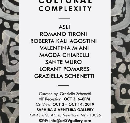 Cultural Complexity